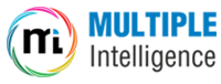 MULTIPLE INTELLIGENCE LTD.