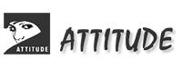 ATTITUDE BEAUTY SALON